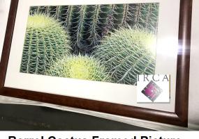 Art-Barrell-Cactus