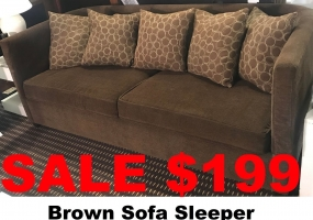 Sofa-Sleeper-Brown